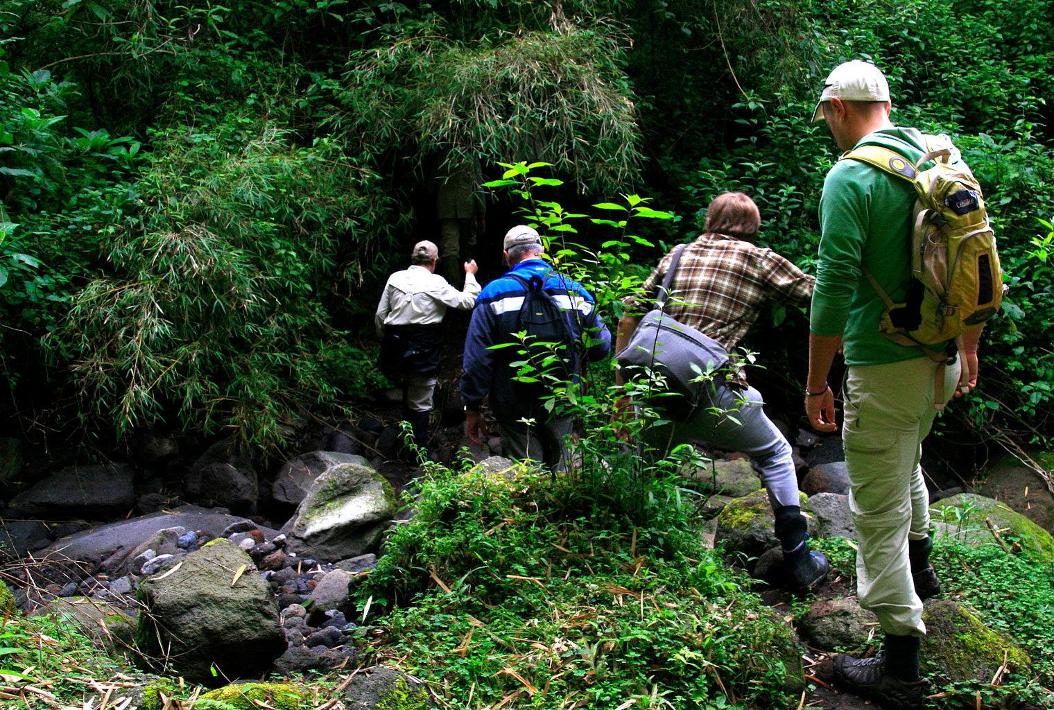 Sabyinyo-Silverback-Lodge-Rwanda-Stream-Dave-Richards