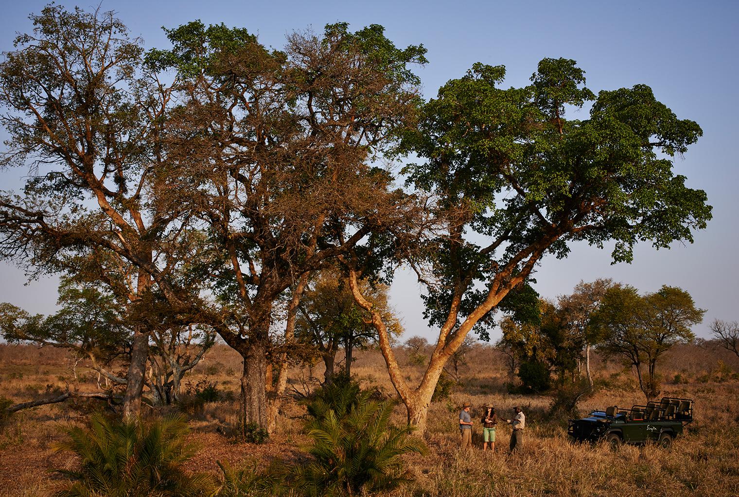 Singita-Castleton-South-Africa-Activity