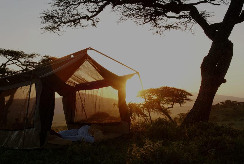 Syuan-Camp-Tanzania-Tent-Hero
