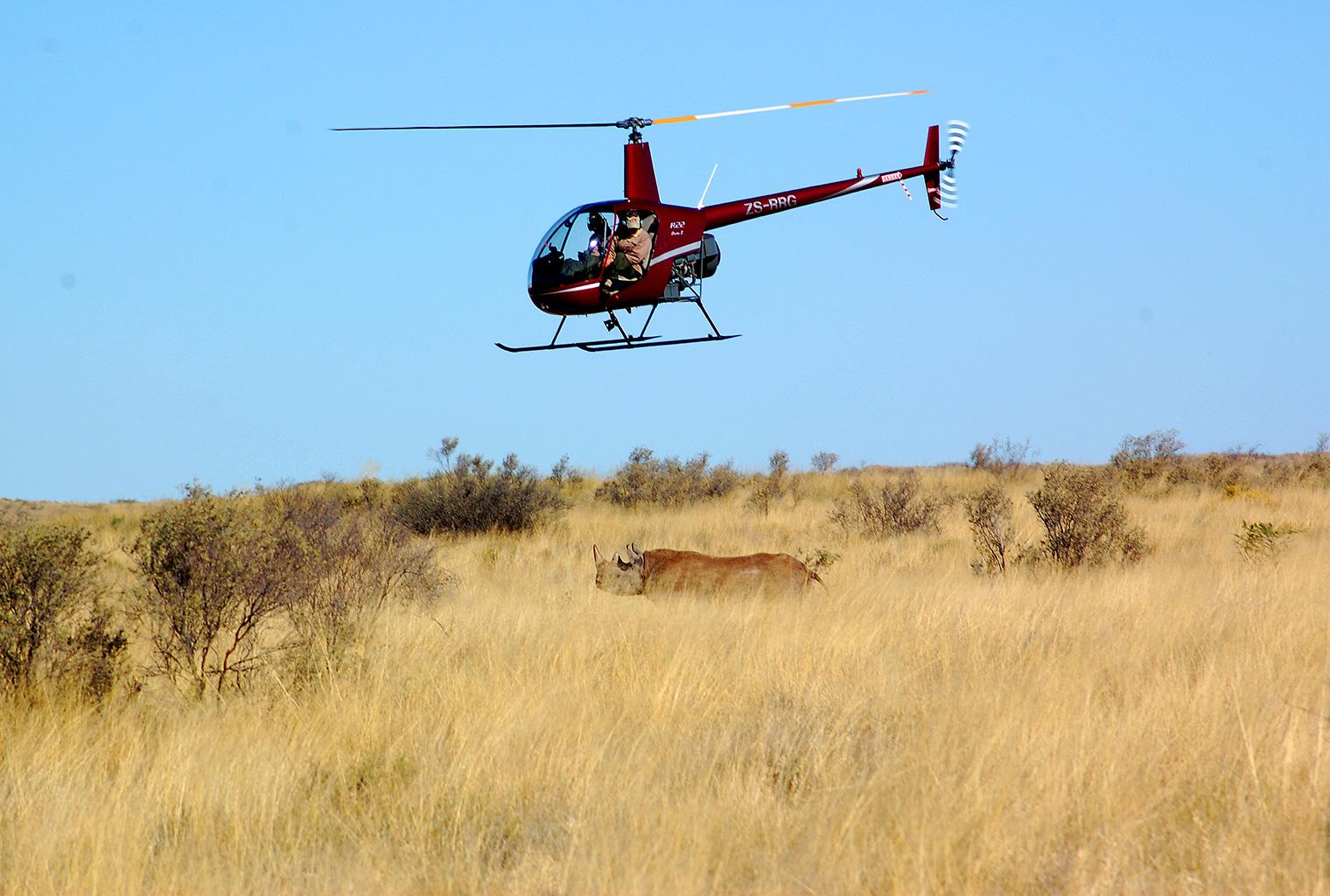 Tarkuni-South-Africa-Activity