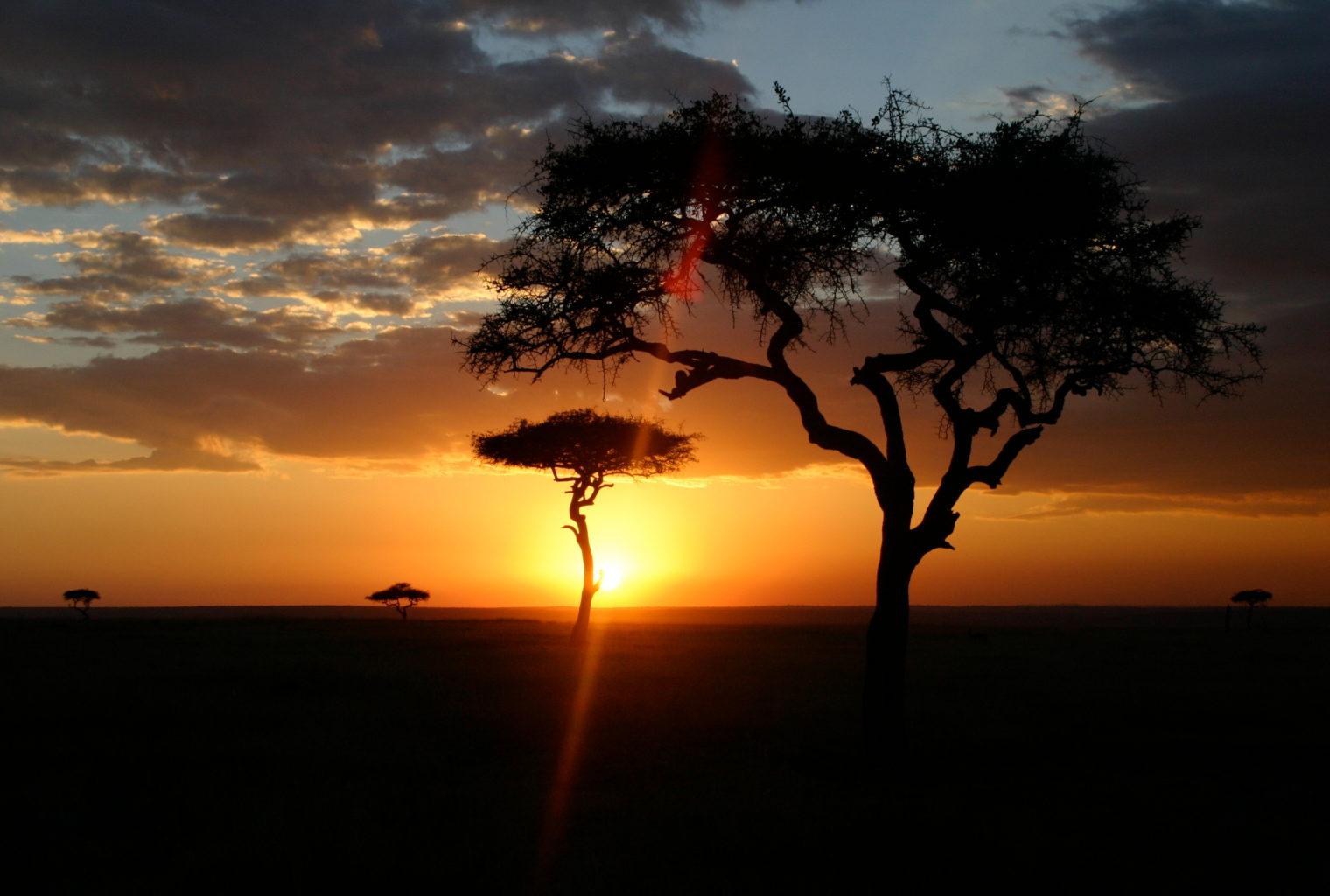 Roberts Safaris Kenya Sunset