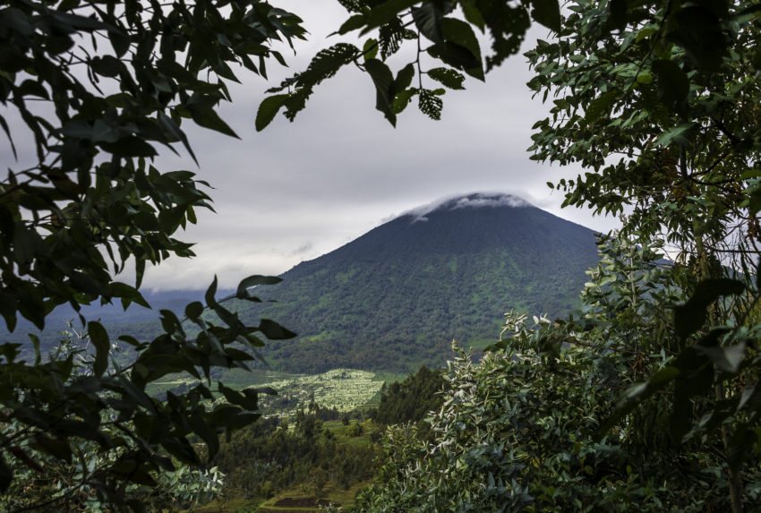 Wilderness Safaris Bisate Lodge, Rwanda (64)