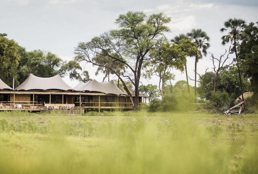 Mombo Camp Botswana Moremi