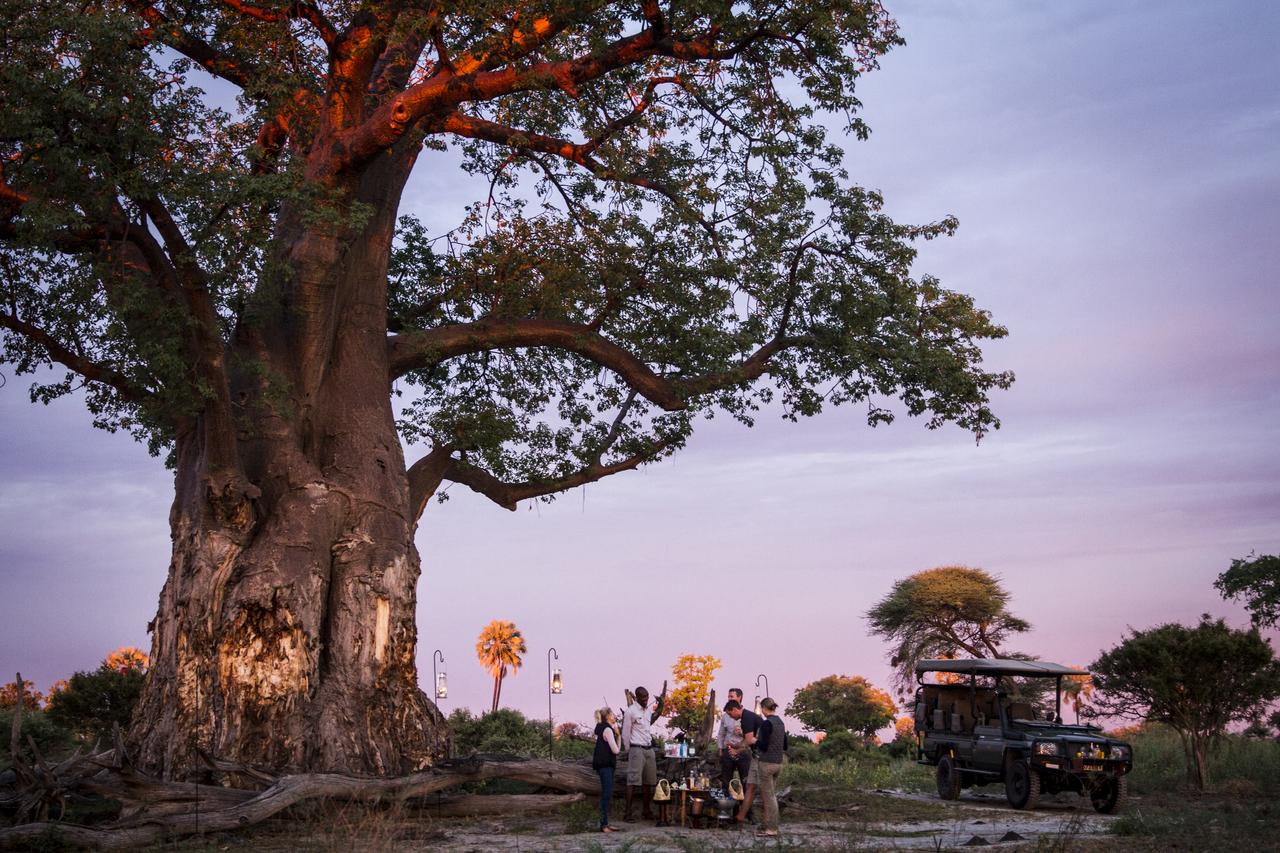 Mombo-Camp-Botswana-Sundowner