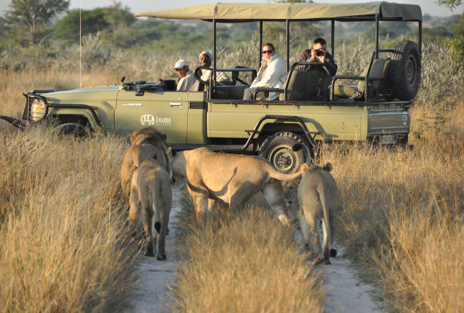 Tau Pan Botswana Main Area
