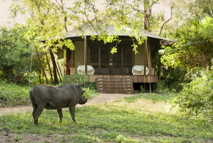 A delightful tented c& Ngala Tented C& sits on the banks of the seasonal River Timbavati just 3km from the Kruger National Parku0027s Orpen Gate. & African Safari Destinations: Luxury Bespoke Travel