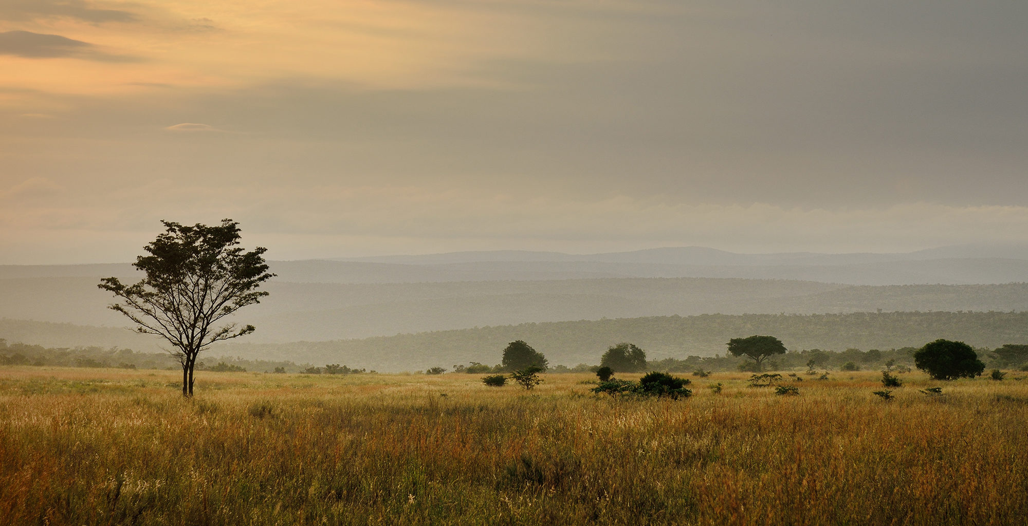 South-Africa-Waterberg-Landscape