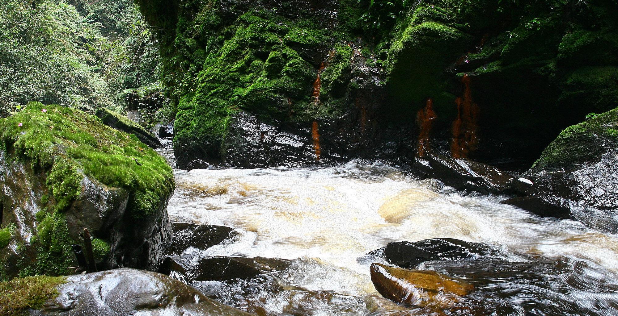 Rwanda-Nyungwe-National-Park-Waterfall