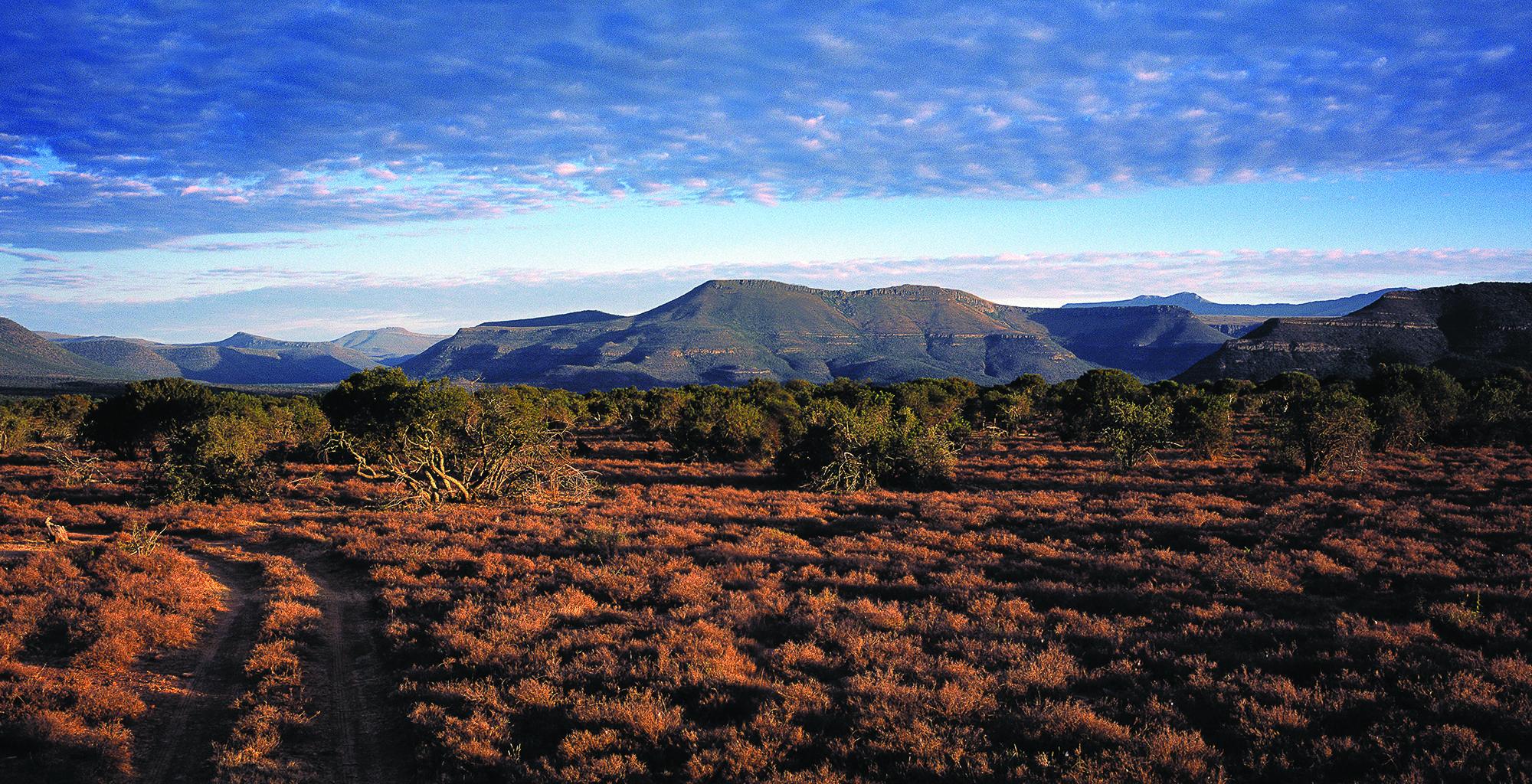 South-Africa-Great-Karoo-Views