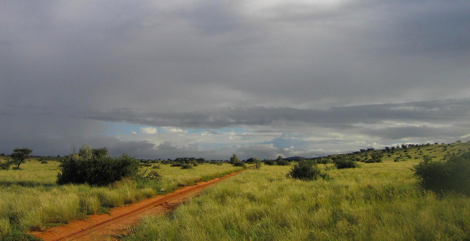 South-Africa-Kalahari-Dirt-Road