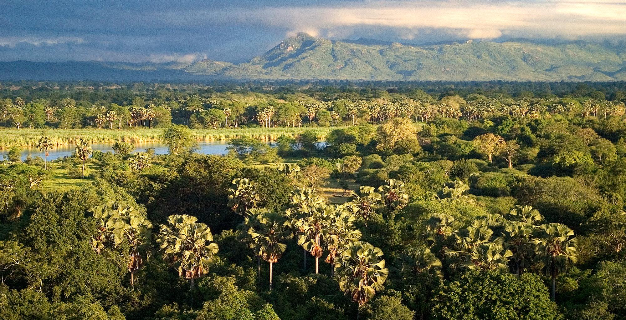 Malawi-Liwonde-National-Park-Landscape-Aerial