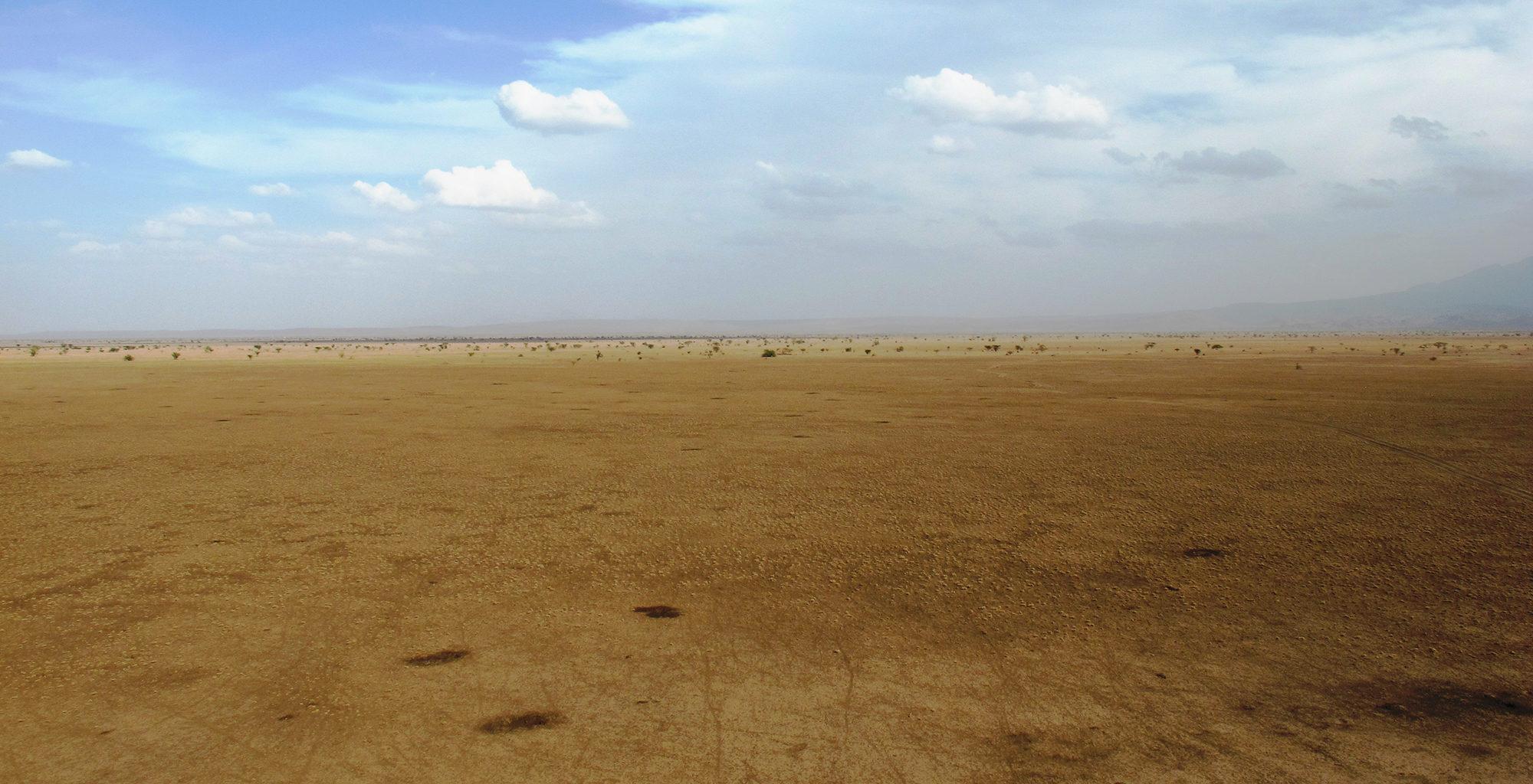 Ethiopia-Awash-Alledeghi-Landscape