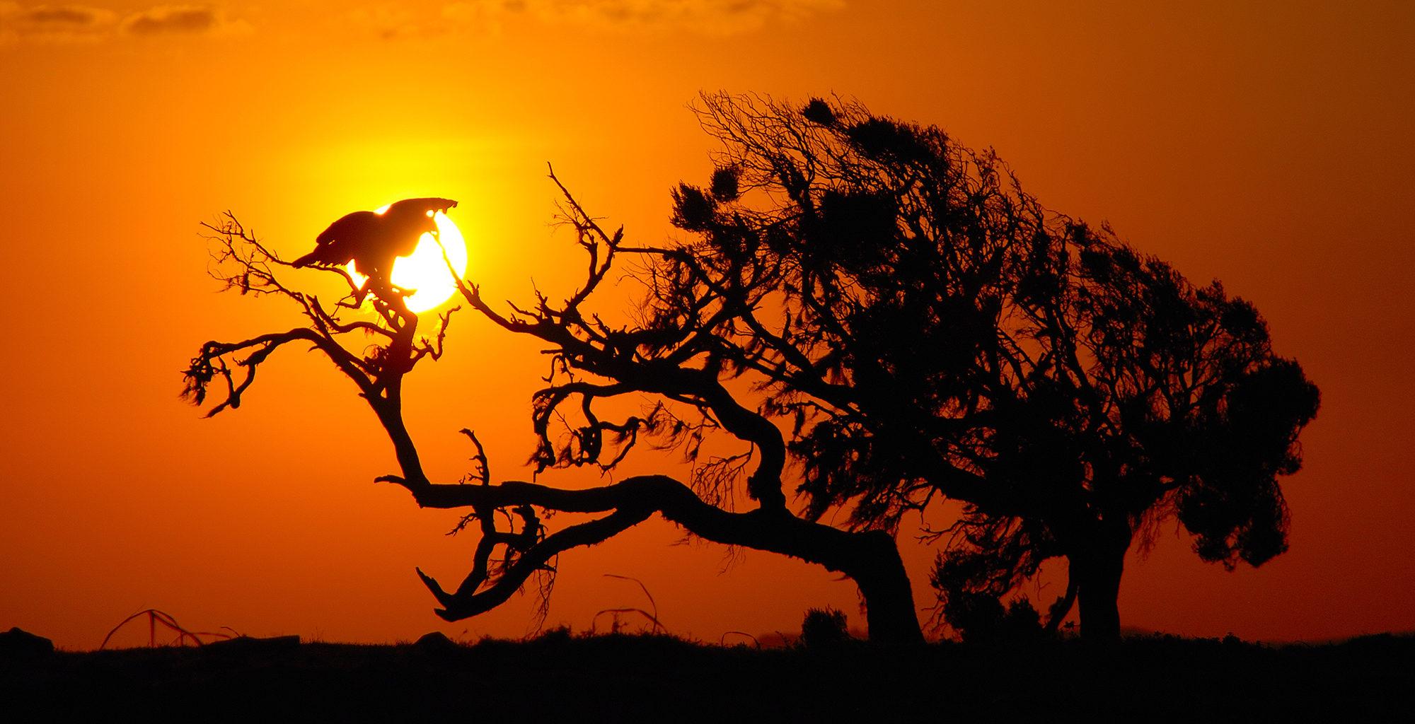 Ethiopia-Simien-Mountains-Sunset