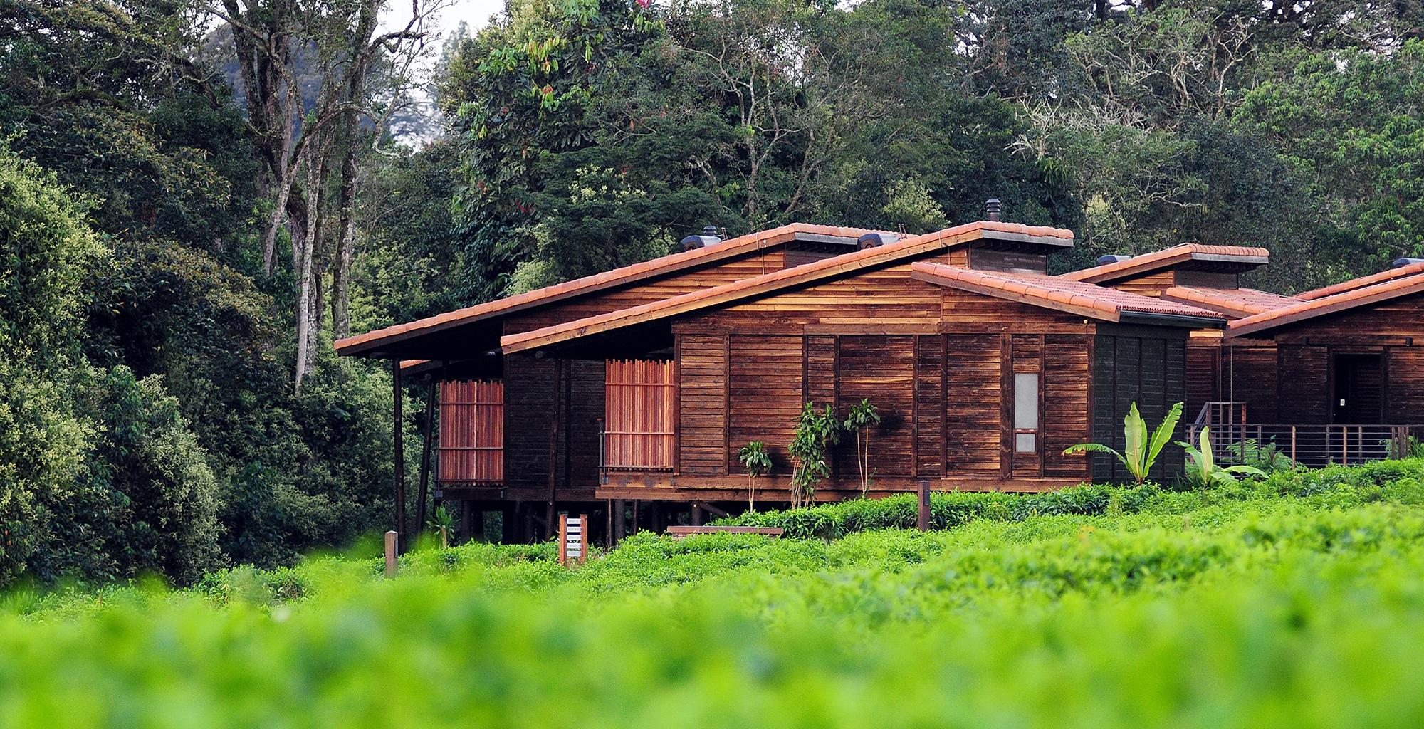 Rwanda-Nyungwe-Forest-Lodge-Exterior