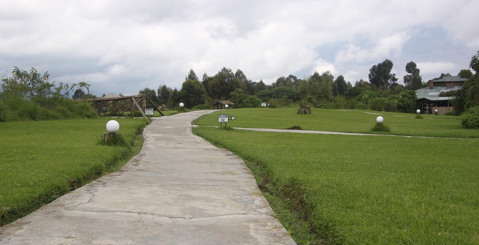 Rwanda-Mountain-View-Gorilla-Lodge-Path