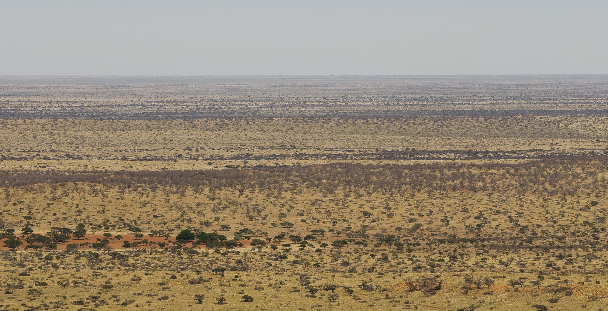 South-Africa-Kalahari-Landscape