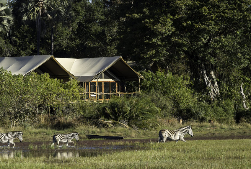 Botswana-Tubu-Tree-Camp-Exterior