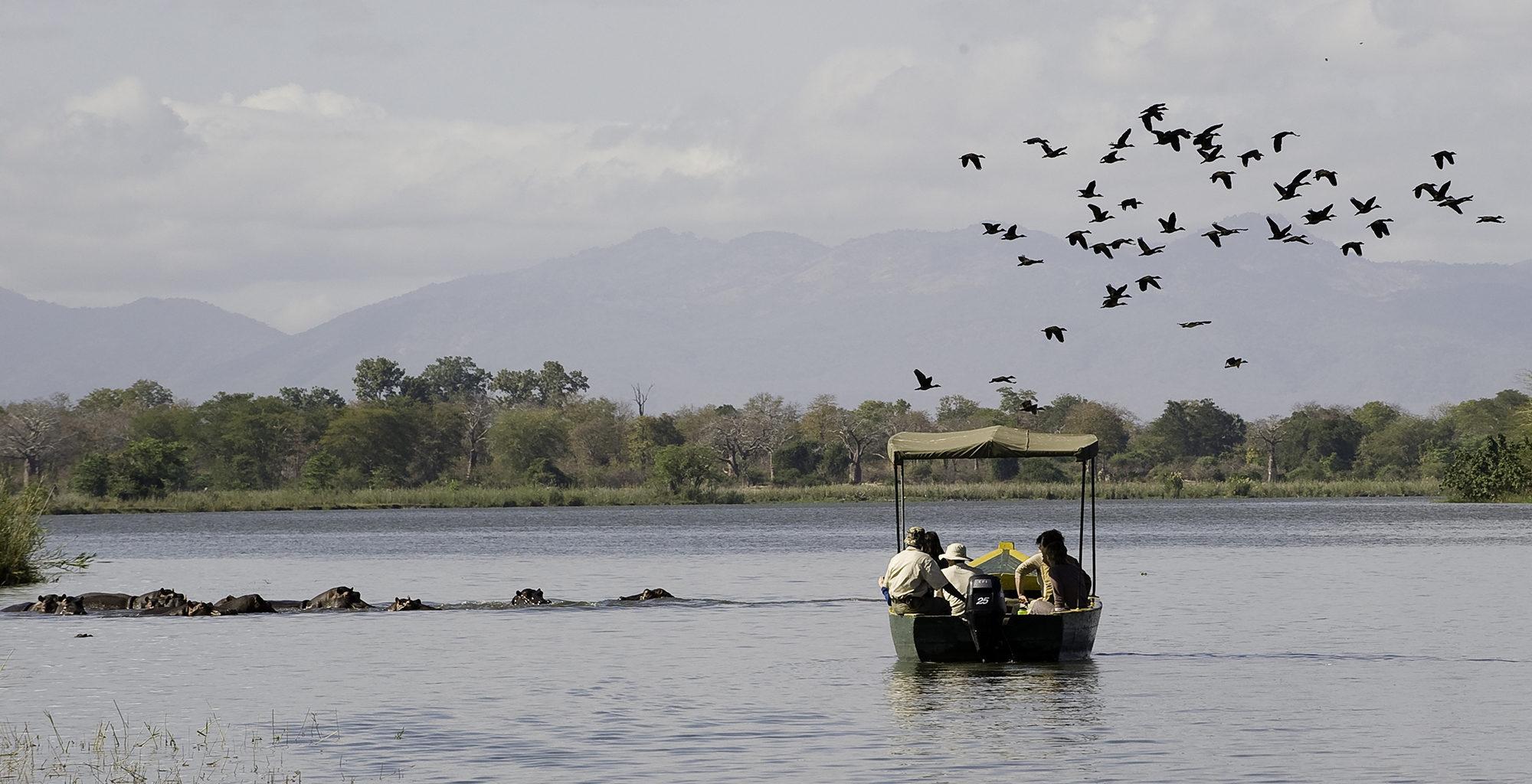 Malawi-Liwonde-National-Park-Boating
