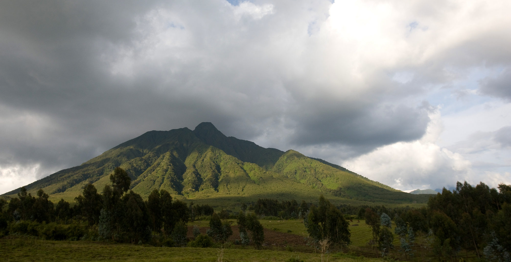 Rwanda-Volcanoes-National-Park-Landscape