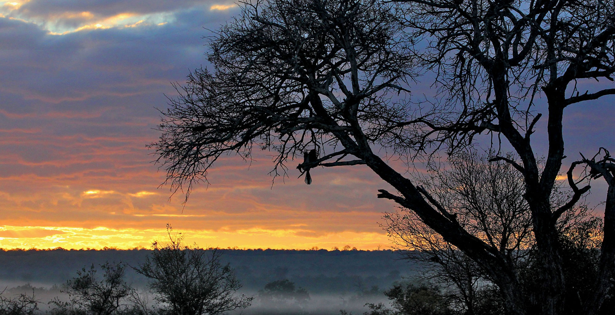 South-Africa-Kruger-National-Park-Sunset