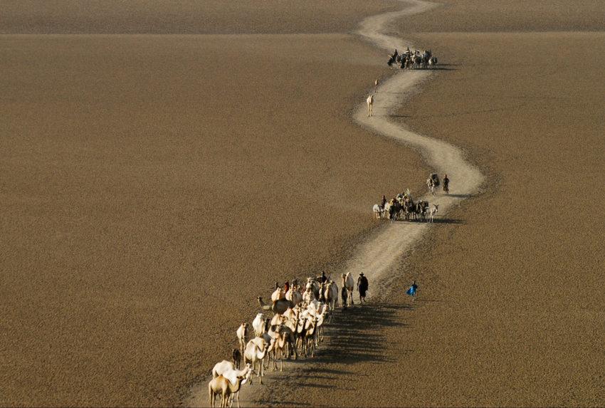 Kenya-Roberts-Safaris-Camel-Ride