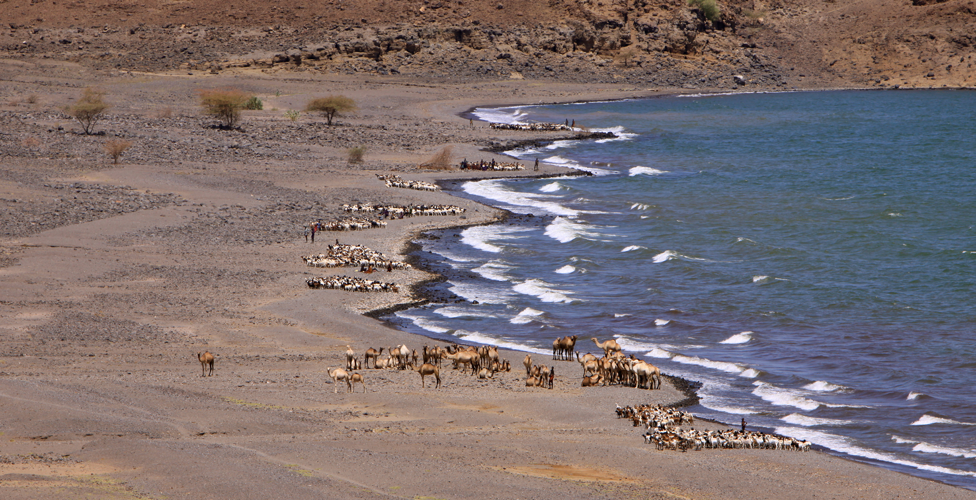 Kenya-Roberts-Safaris-Coast