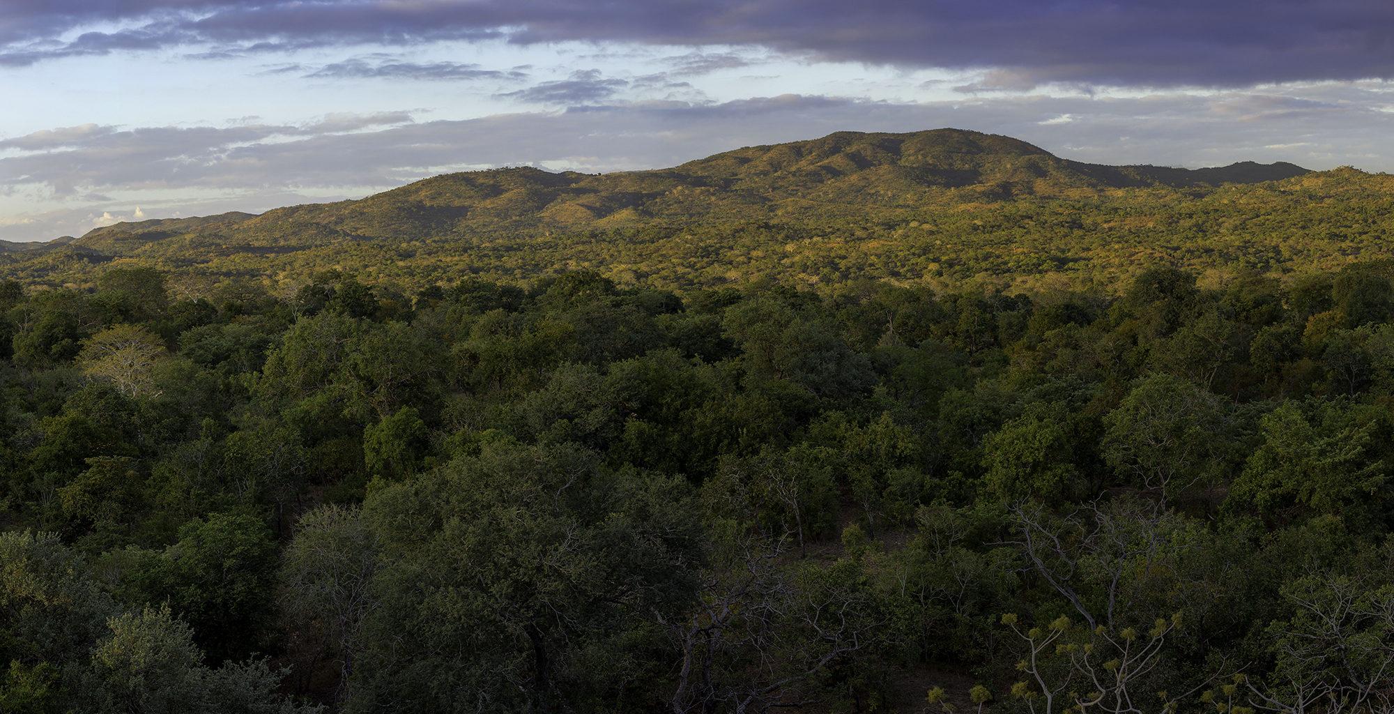 Malawi-Majete-Wildlife-Reserve-Landscape