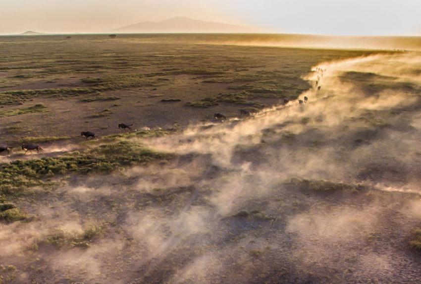 Tanzania-Loliondo-Serengeti-Hero