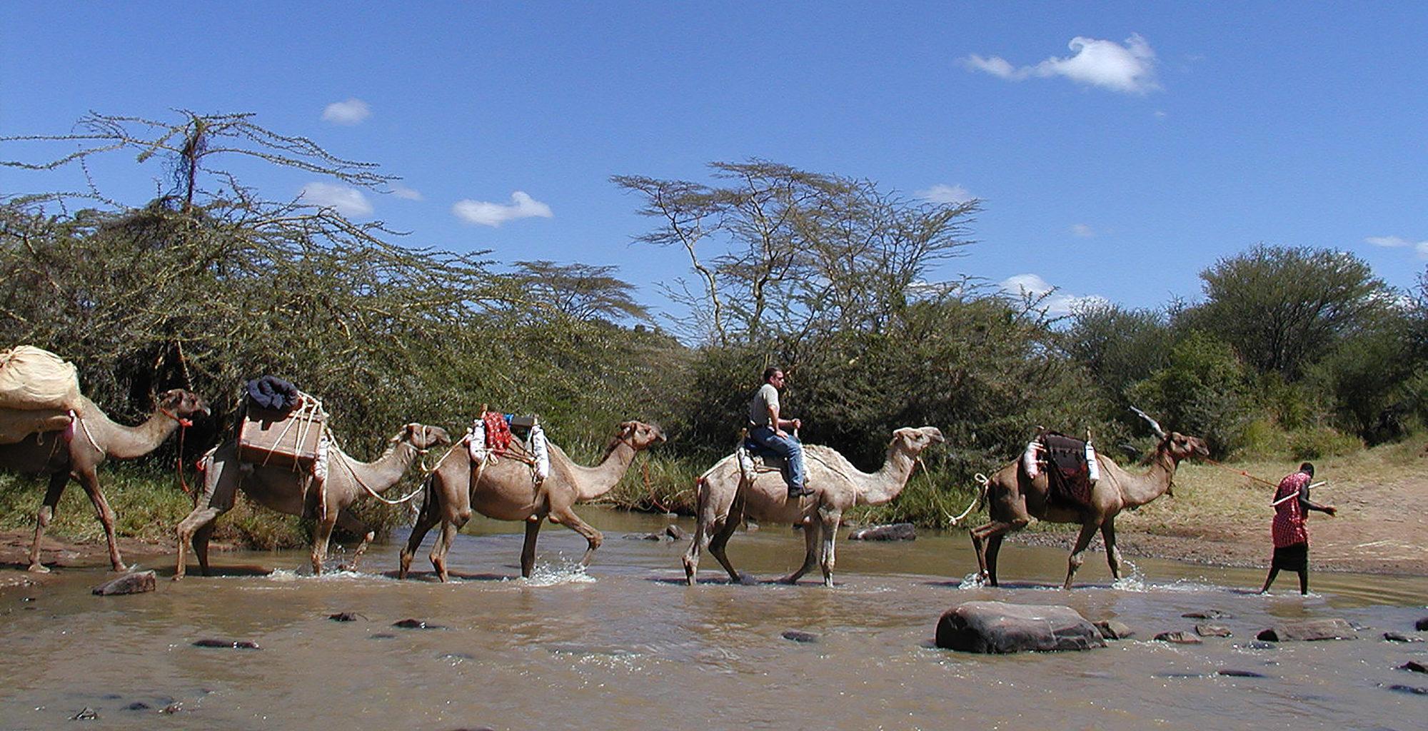 Kenya-Sosian-Game-Lodge-Camel-Ride