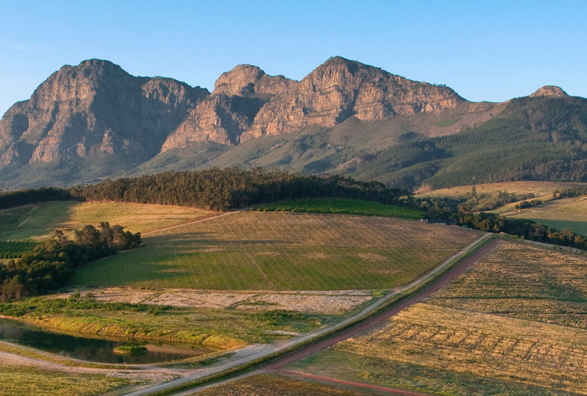 South-Africa-Winelands-Hero