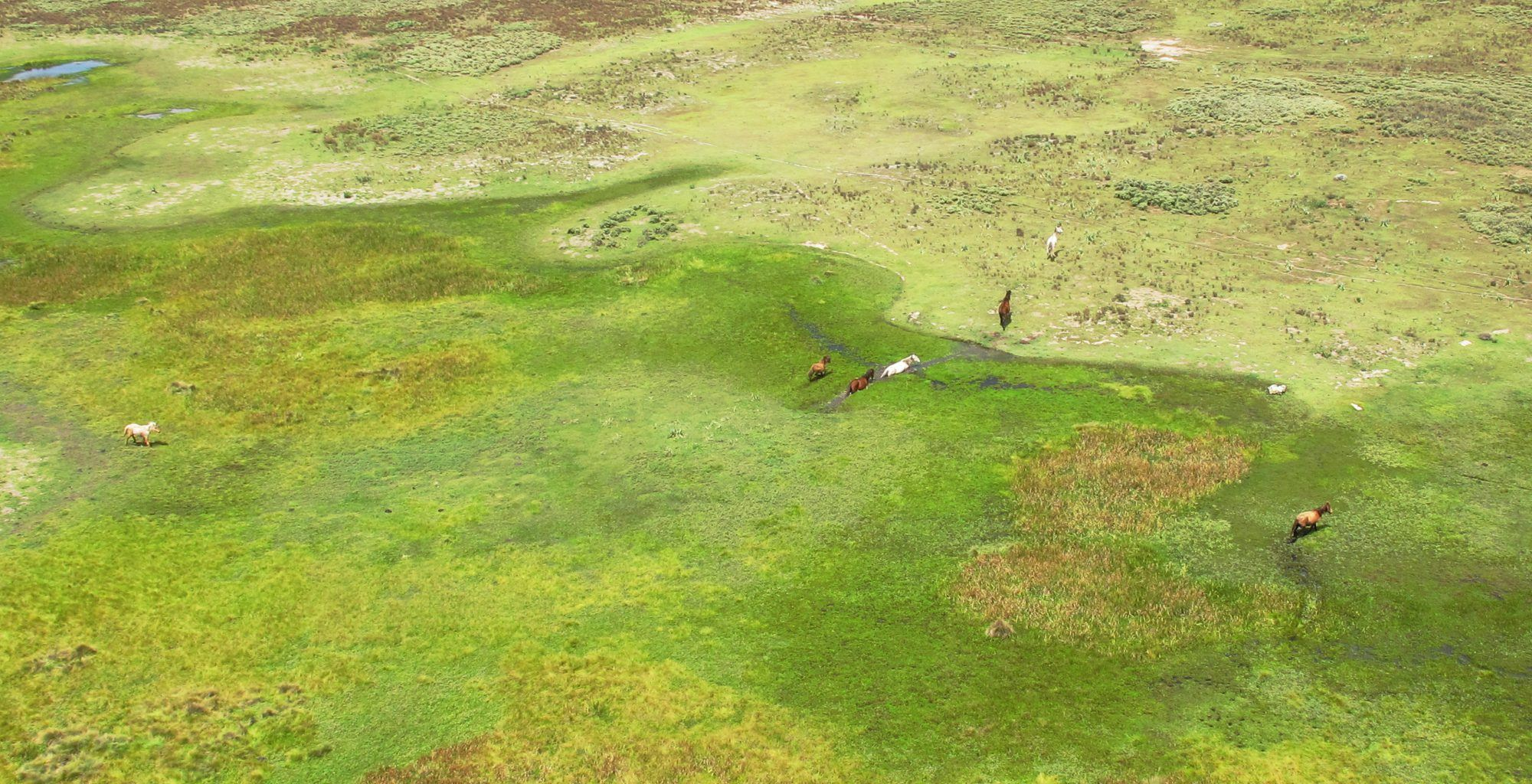 Ethiopia-Bale-Mountains-Aerial-Swamp