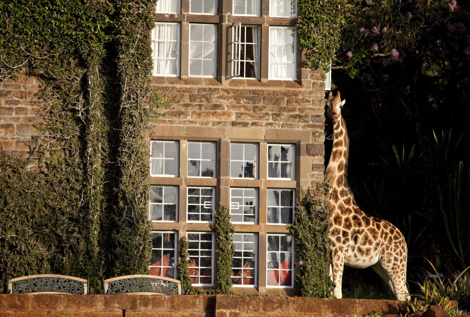 Rooms: African Safari Destinations: Luxury Bespoke Travel