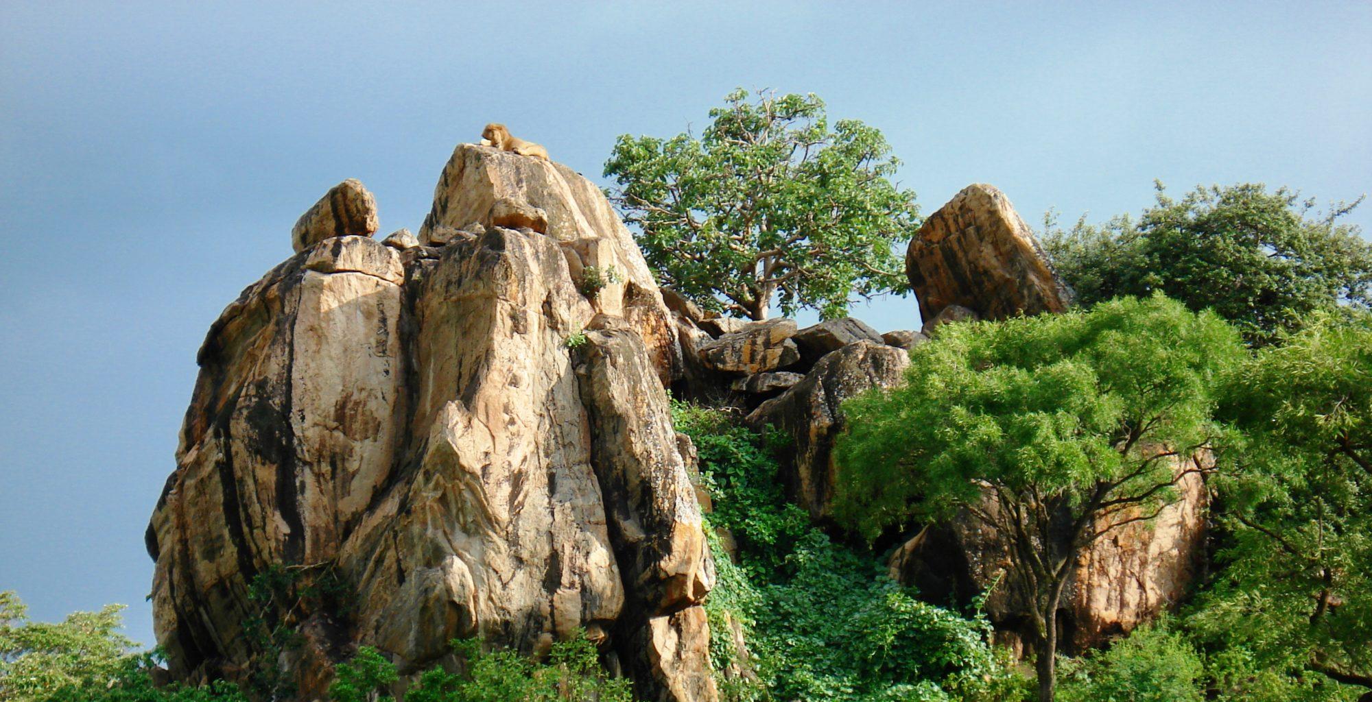 Uganda-Kidepo-Valley-Rocks