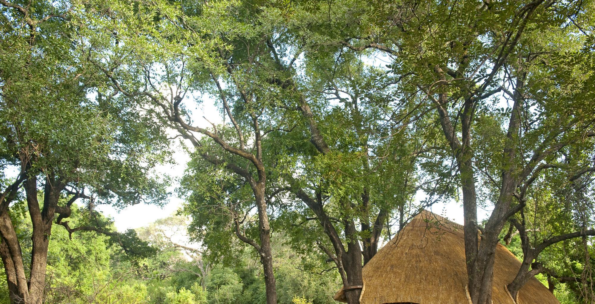 Nkwali Camp Zambia Exterior