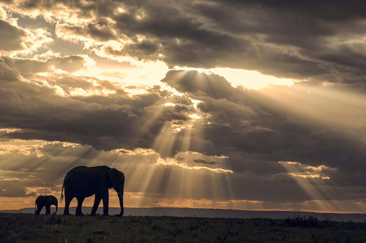 Angama Mara Kenya Sunset