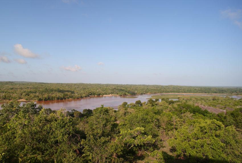 Tanzania-Selous-Game-Reserve-Landscape-Aerial