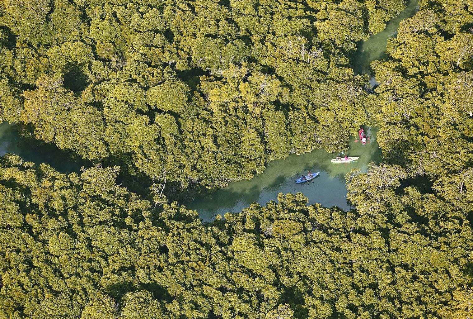 Azura-Quilalea-Mozambique-Aerial