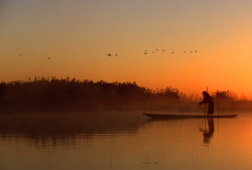 Bang dawn fisherman