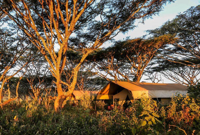 Tanzania-Lemala-Ngorongoro-Exterior