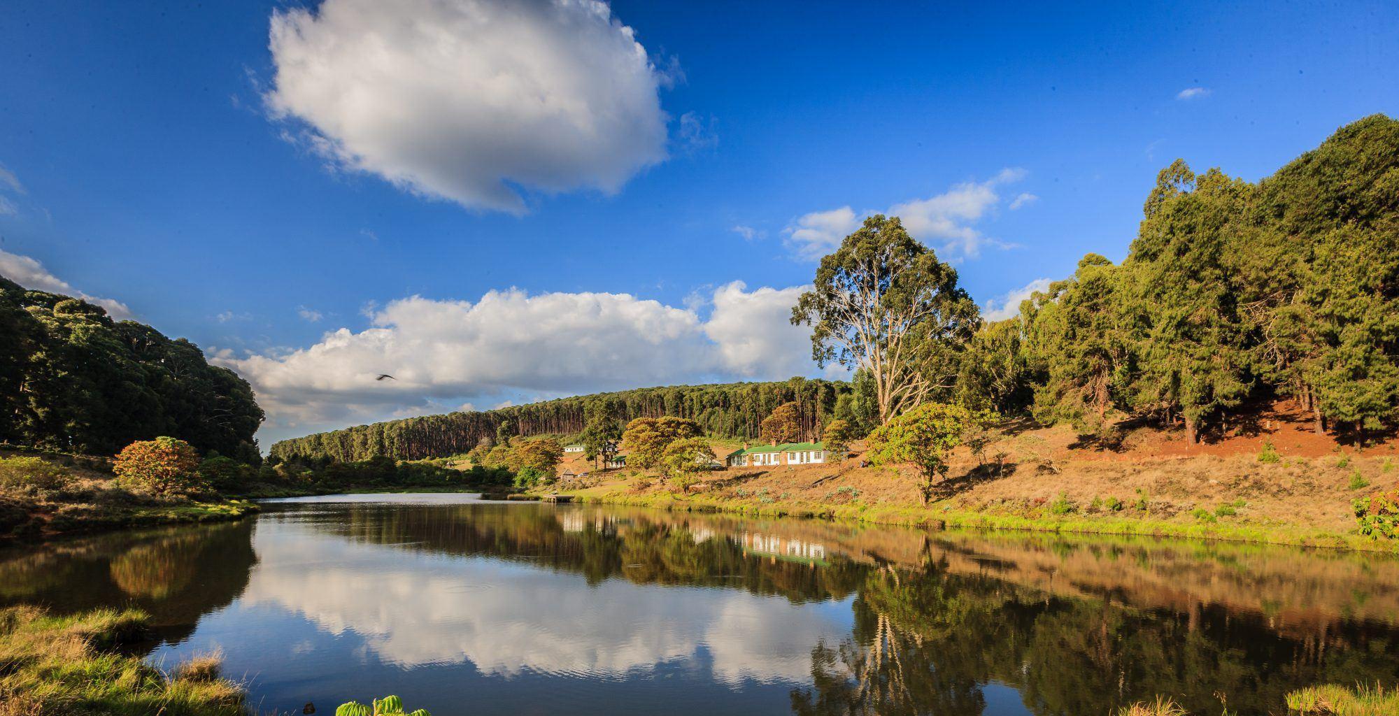 Malawi-Bentley-Palmer-Landscape