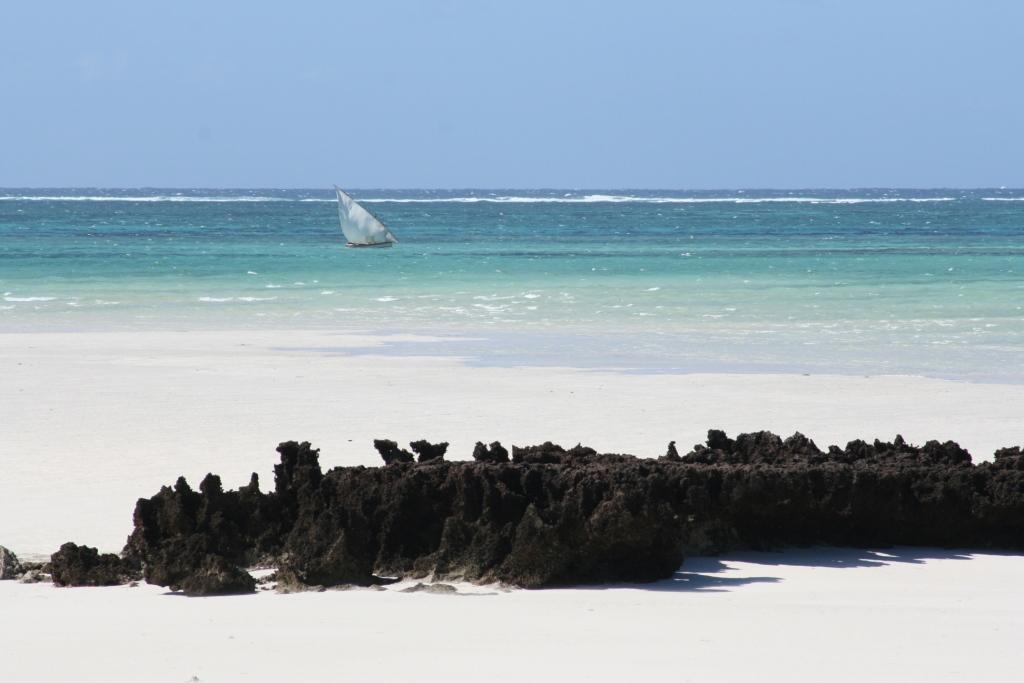 Nampula & Ilha d Mozambique Landscape