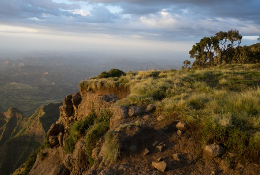 Tigray Community Ethiopia Views