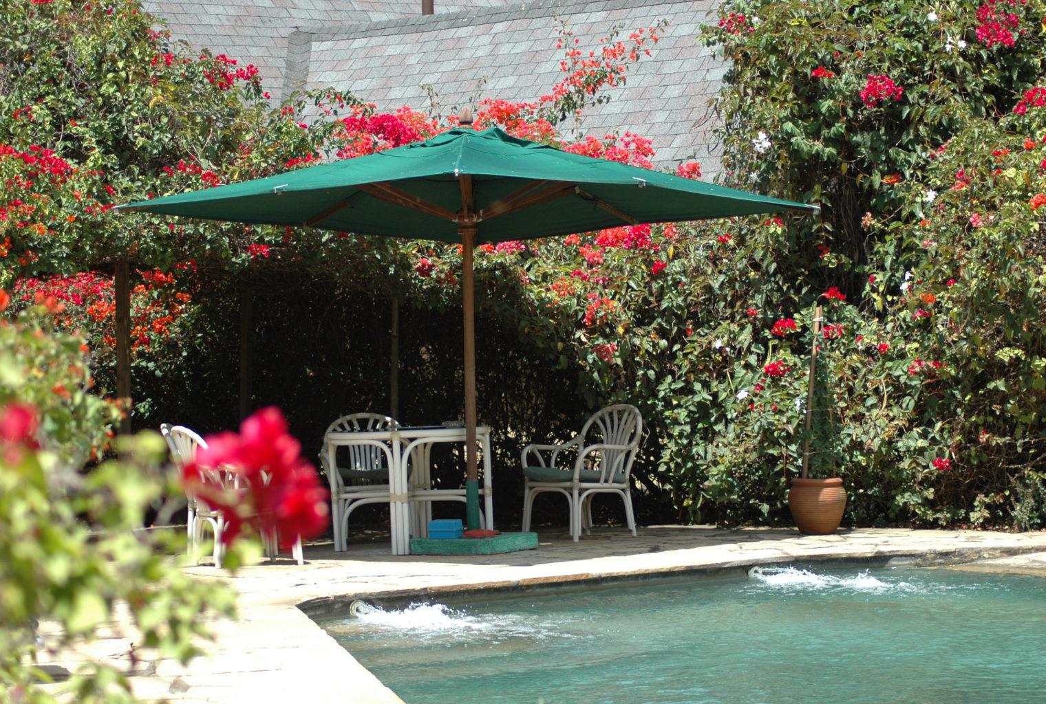 Mundui Estate Kenya Pool