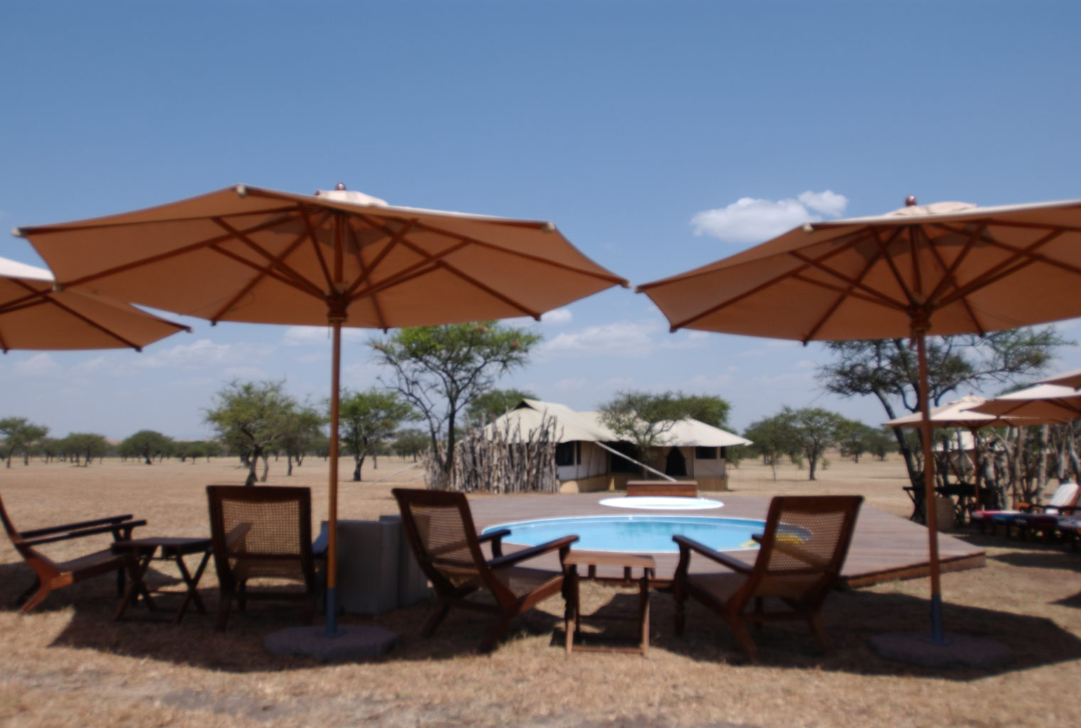 Sabora Tented Camp Pool