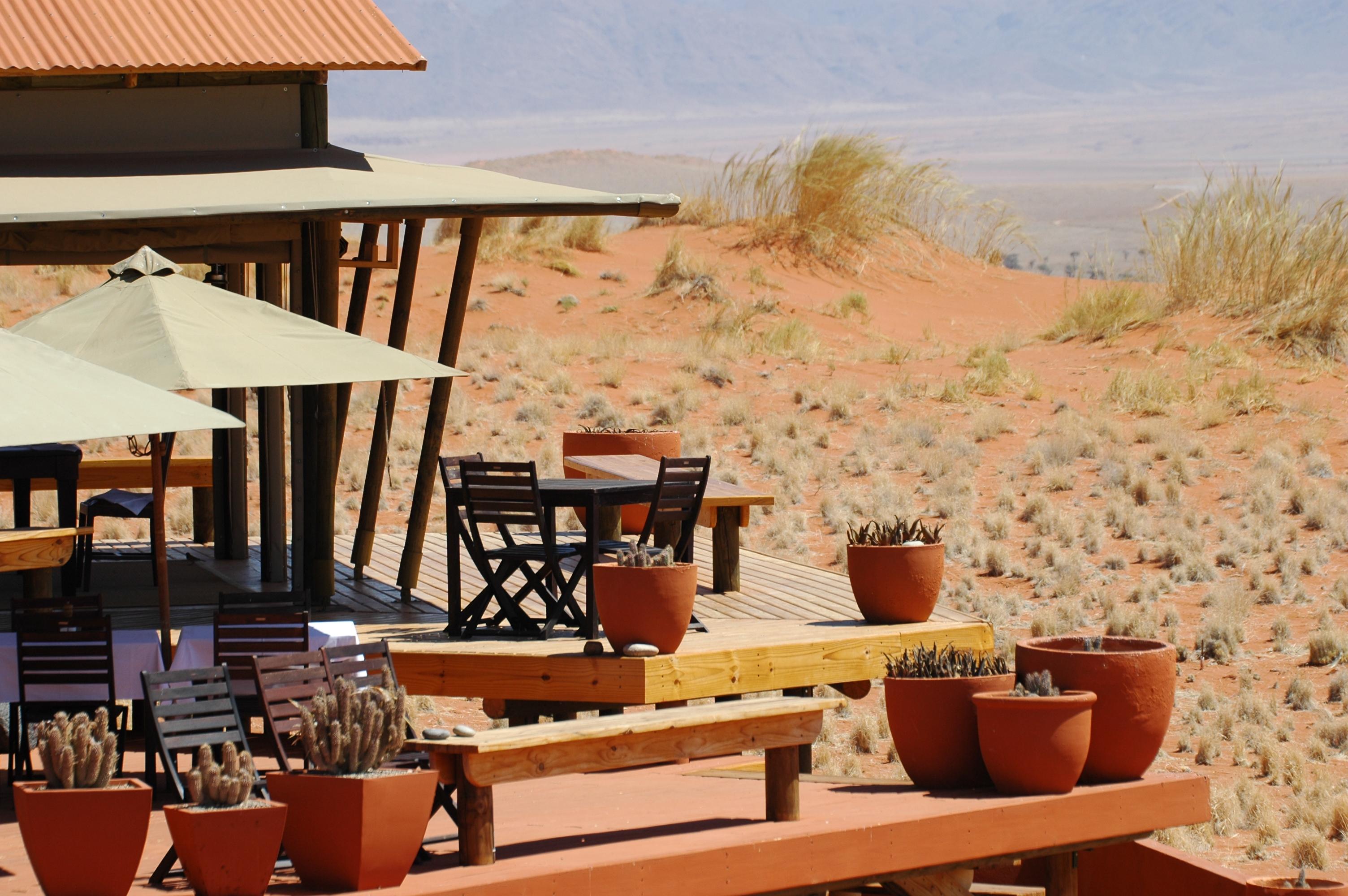 Wolwedans-Dune-Lodge-Plants