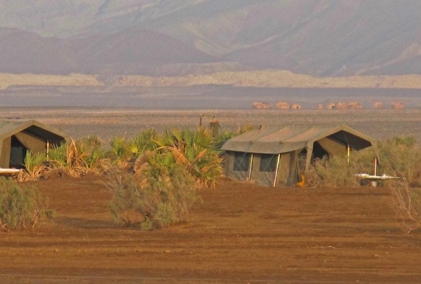 Danakil-Camp