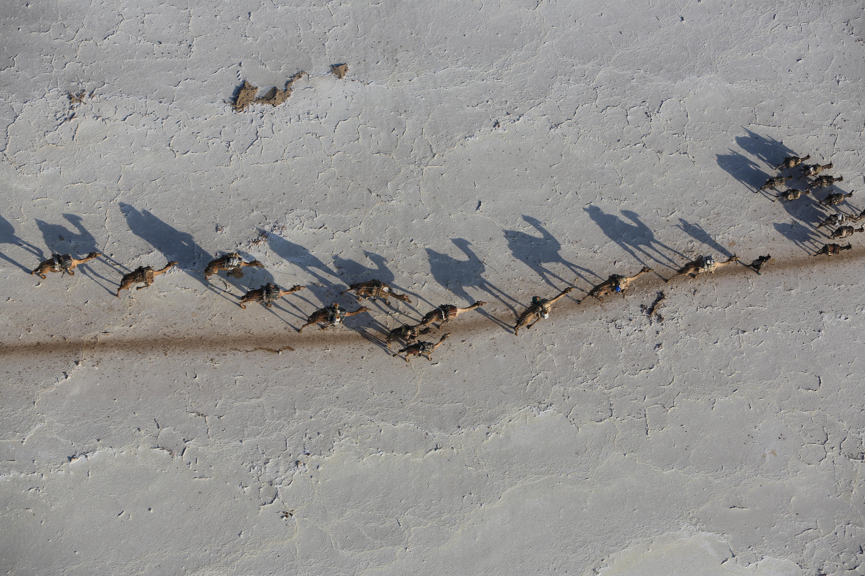 Danakil Ethiopia-Aerial