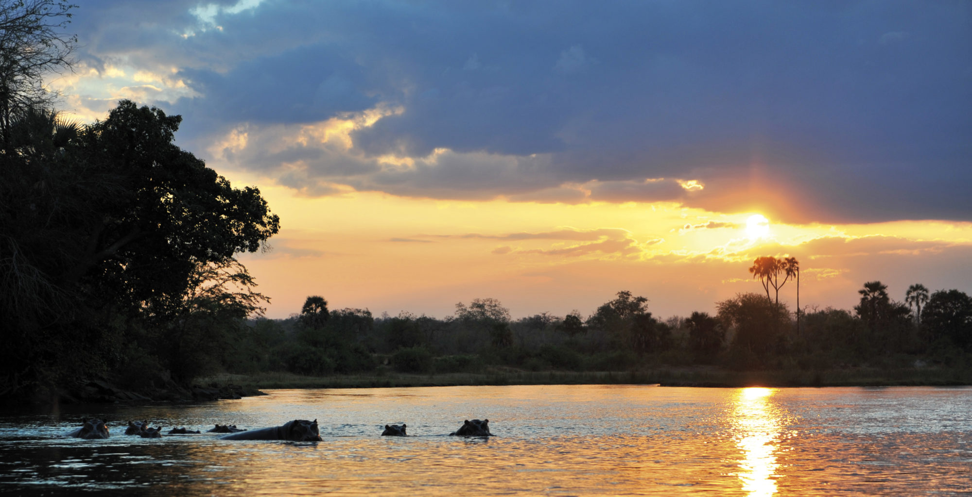 Tanzania-Selous-Game-Reserve-Hippo-Point