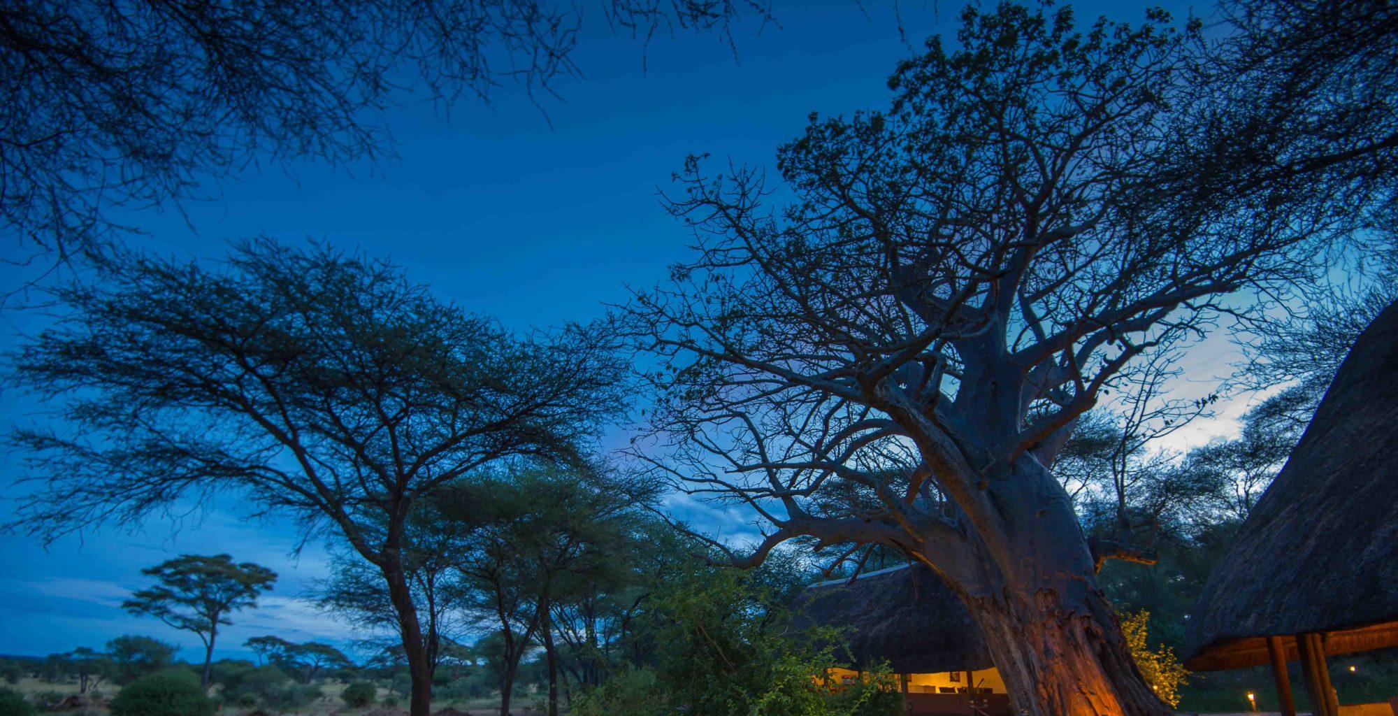 Swala Camp Tanzania Exterior