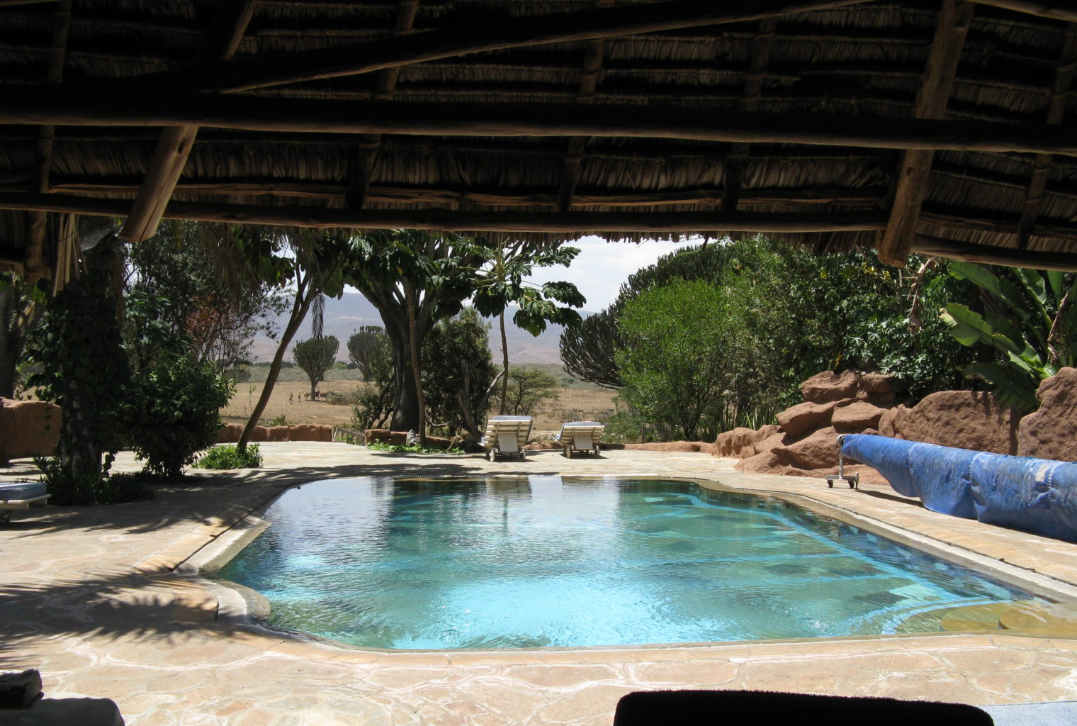 Chui Lodge Kenya Pool